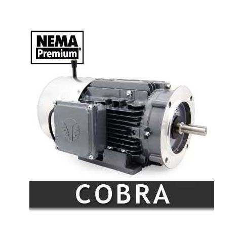 0.5 HP Cobra Electric Motor (EM1003)