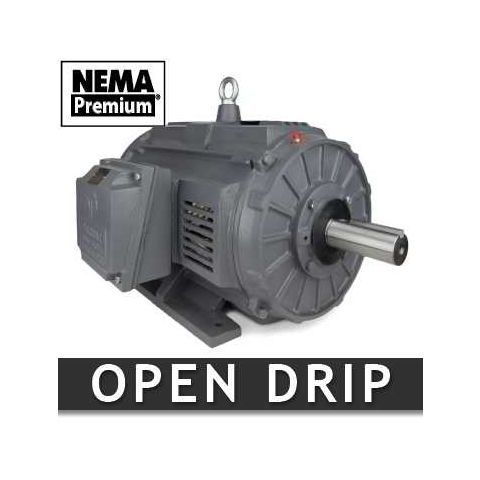 30 HP Three Phase Open Enclosure Motor (EM1652)